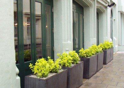 Exterior Landscaping Boutique Hotel, London Botanical
