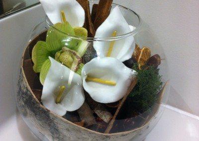 toilet-plant-display