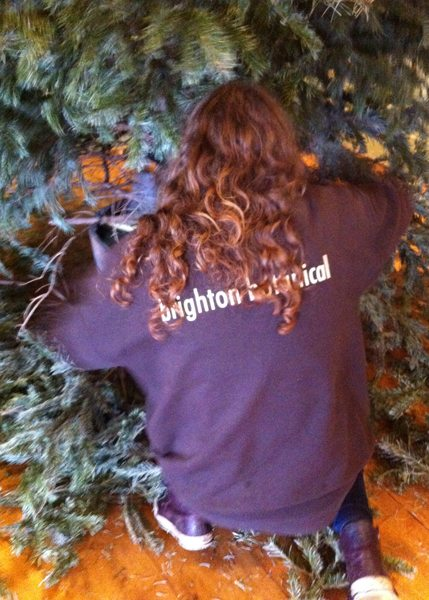 Interior & Exterior Landscaping, Christmas Tree Hire