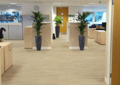 interior-landscaping4