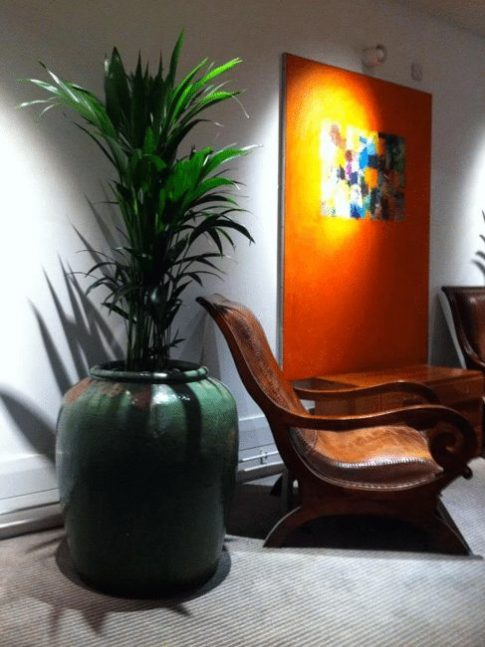 Interior Landscaping, Reception & Office Plant Displays